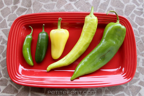Red plate with 5 different chile peppers that can be used in making green salsa
