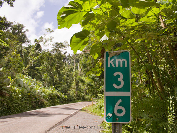 Kilometer sign in El Yunque Puerto Rico for 7 surprising facts about Puerto Rico